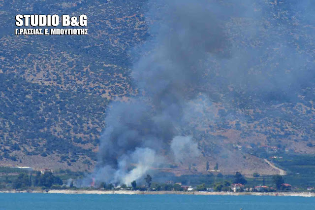 Τρεις πυρκαγιές συγχρόνως σε Μύλους, Σκαφιδάκι και Γλυκειά στην Αργολίδα (βίντεο)