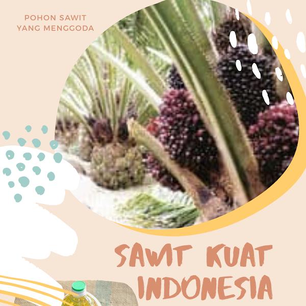 Sawit Hebat, Indonesia Kuat dalam Win-Win Solution