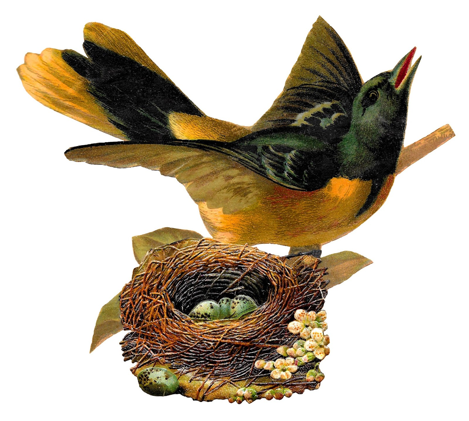 Bird nest clip art