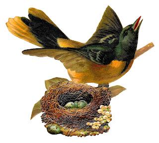 https://4.bp.blogspot.com/-uPFzR43-8ns/Wk6vfMeUieI/AAAAAAAAiB4/Db5j-XgyNIUGpvy4EksH_uUJ7Xngx_44wCLcBGAs/s320/bird-nest-eggs-animal-artwork-clipart-image-transfer.jpg