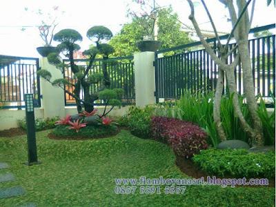 Tukang Taman Surabaya Taman Elegan