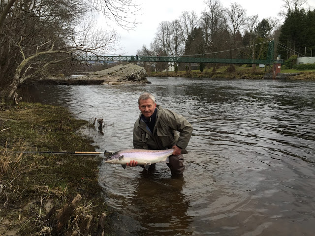 Salmon fishing scotland salmon fishing scotland tay for Dave stewart fishing report