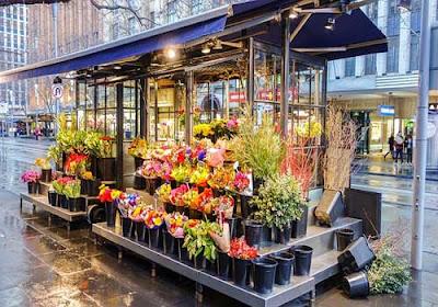 Peluang Bisnis Bunga Hias Yang Sangat Potensial