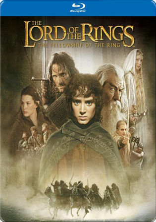 Lord of the Rings The Fellowship of the Ring 2001 BRRip 600MB Dual Audio 480p