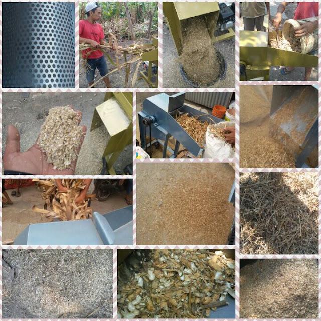 Foto hasil pengolahan bahan pakan kering
