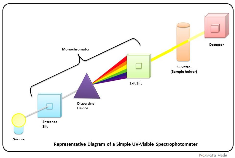B for Biology Spectrophotometry - UV-Visible Spectrophotometry