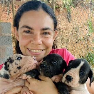 Tatiana Sheldon e seus filhotes de Dogue Alemão