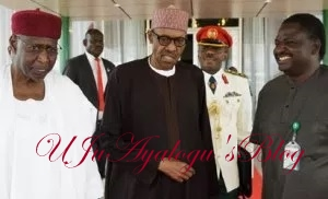 Politicians Hired Soothsayers From India To Pray For Buhari's Death – Onochie
