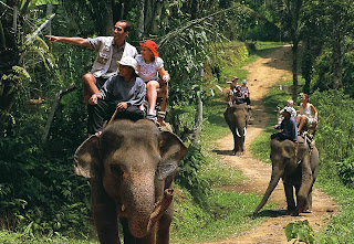 Holiday Fun Activities In Bali, Ride An Elephant Tour