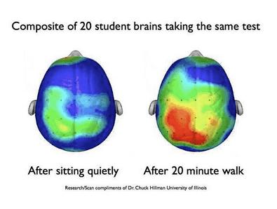تأثُّر الدماغ