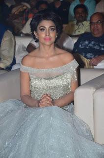 Shriya Saran in a Glittering Silver Saree Stunning Pics