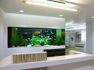 jenis-jenis-aquarium-terrarium.jpg