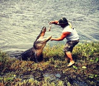 nola swamp tour