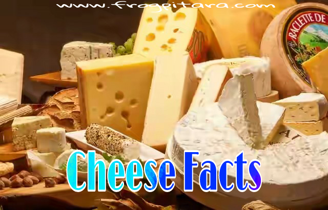 Interesting Facts About Cheese in Hindi Paneer