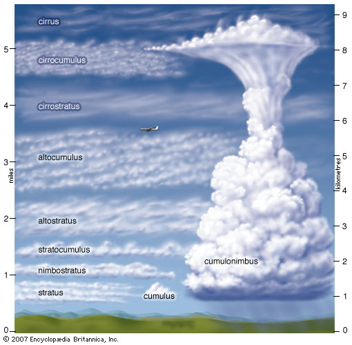BIG BRAIN: Cloud Identification During Near Space Flights