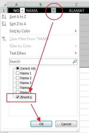 Blanks Filter Excel