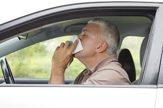 Alergia y conducción - Fénix Directo blog