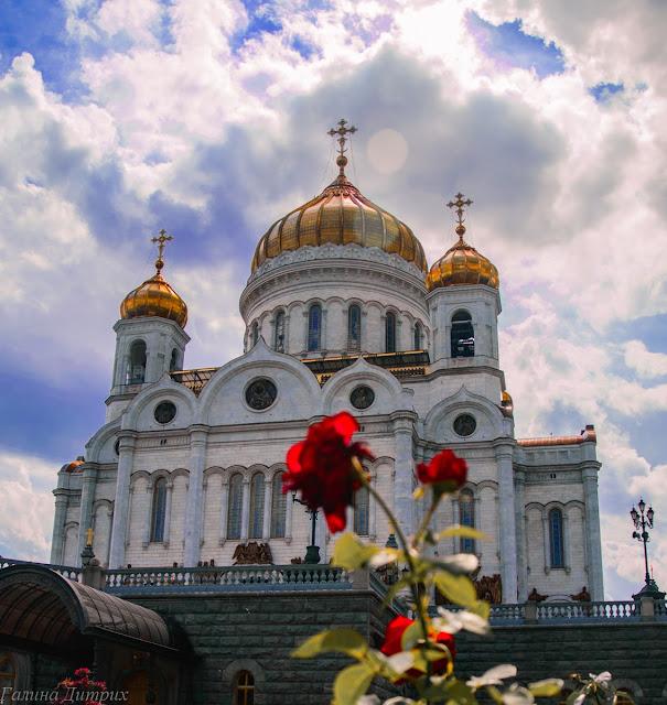 Розы у Храма Христа Спасителя