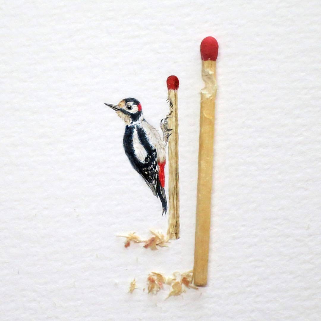 06-Woodpecker-Frank Holzenburg Miniature Drawings and Paintings of Animals-www-designstack-co