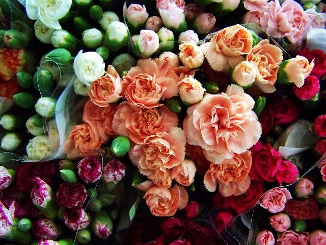 El Clavel: una flor algo más que cañí.