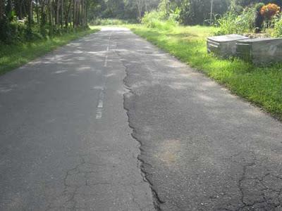 Road in Sabah