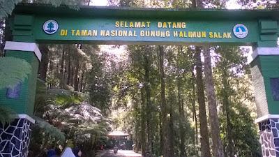 Taman Nasional Gunung Halimun Salak Sukabumi