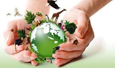 Natureza E Paz 11 Frases De Poetas Sobre Meio Ambiente