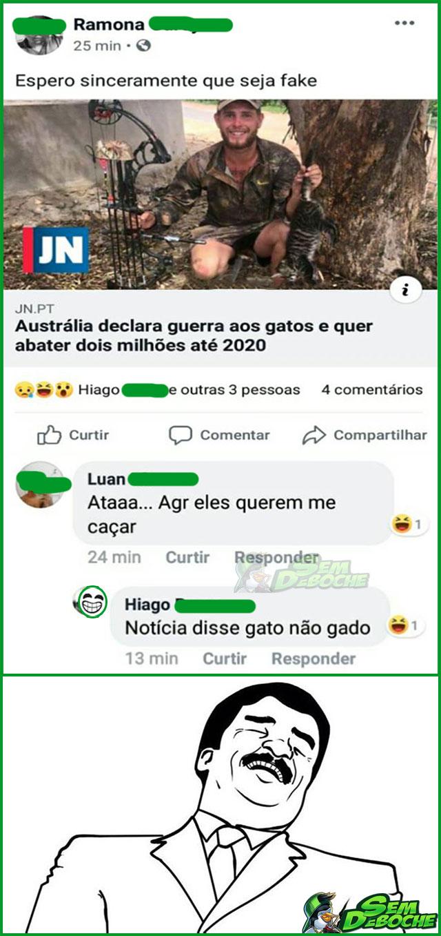 ELES DISSERAM GATO E NÃO GADO
