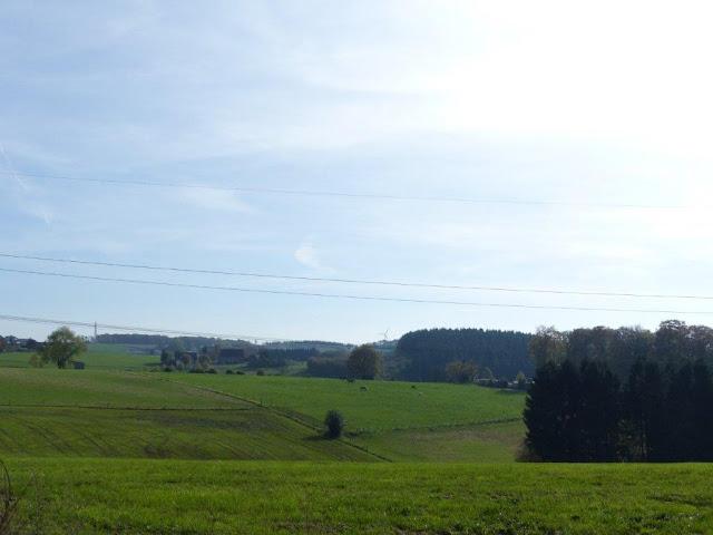Heilenbecke Talsperre Ennepetal Wanderung Rundtour Wald Herbst Hund Depression Gedanken Stress