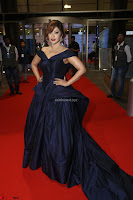 Payal Ghosh aka Harika in Dark Blue Deep Neck Sleeveless Gown at 64th Jio Filmfare Awards South 2017 ~  Exclusive 121.JPG