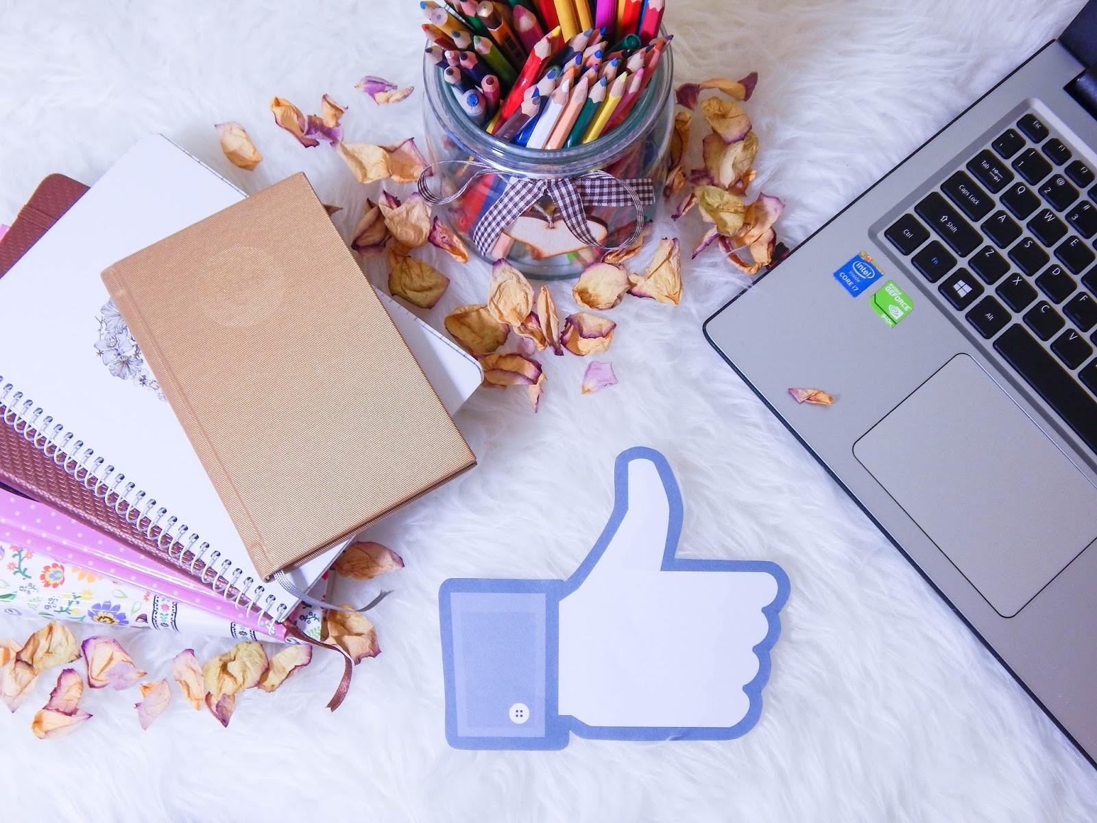 facebook melodylaniella fanpage