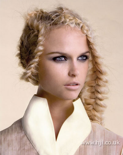 hairstyles with plaits sopho