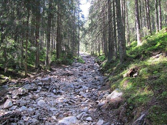 Szlak pokryty kamiennym rumowiskiem.