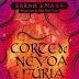 Resenha #32: Corte de Névoa e Fúria - Sarah J. Maas