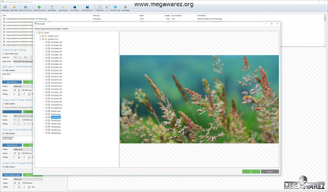 Arclab Watermark Studio imagenes