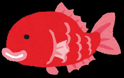 タイのイラスト(魚)