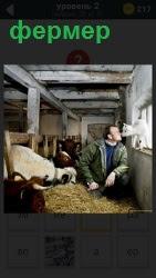фермер кормит овец и с одной из них целуется