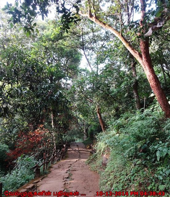Papanasini Kerala
