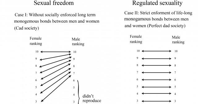 Tinder naiset sukupuoli