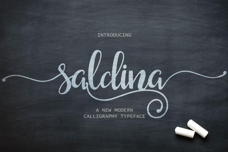 Saldina Is A Brush Lettering Script Font Free Download