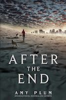 http://j9books.blogspot.ca/2015/03/amy-plum-after-end.html