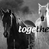 Facebook cover photos cute pictures of animals with quotes / fb covers photo for timeline - together / beautiful horses pictures