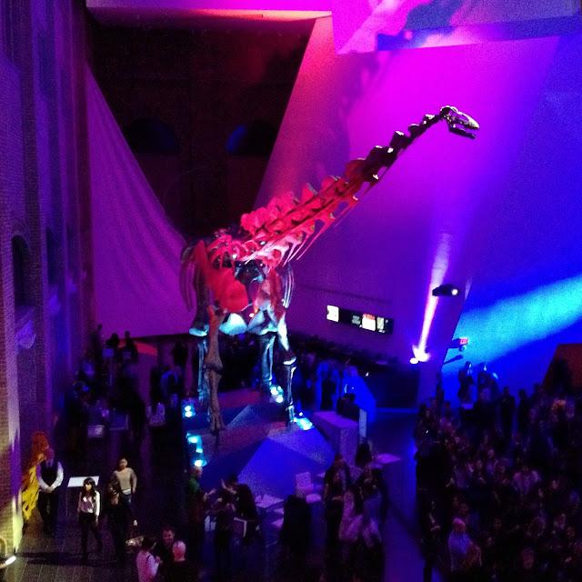 Dino at ROM