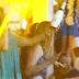 Βροχή από 400 σαμπάνιες σε beach bar της Μυκόνου (video)