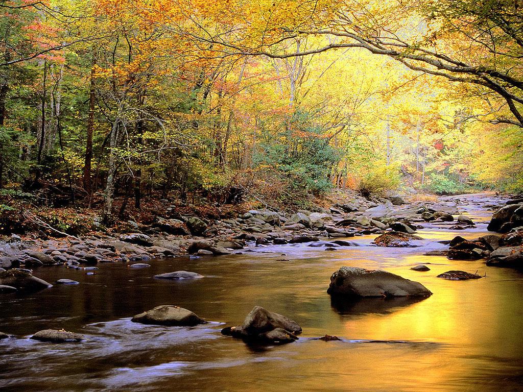Beautiful River Wallpaper ~ Wallpaper & Pictures