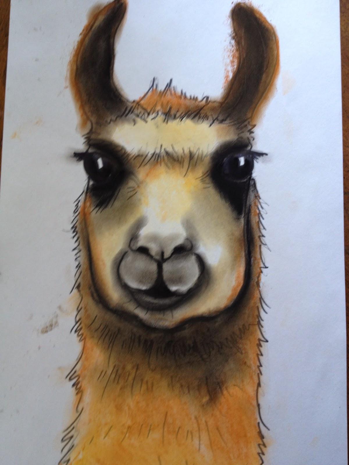 marymaking  llamas with peruvian textiles