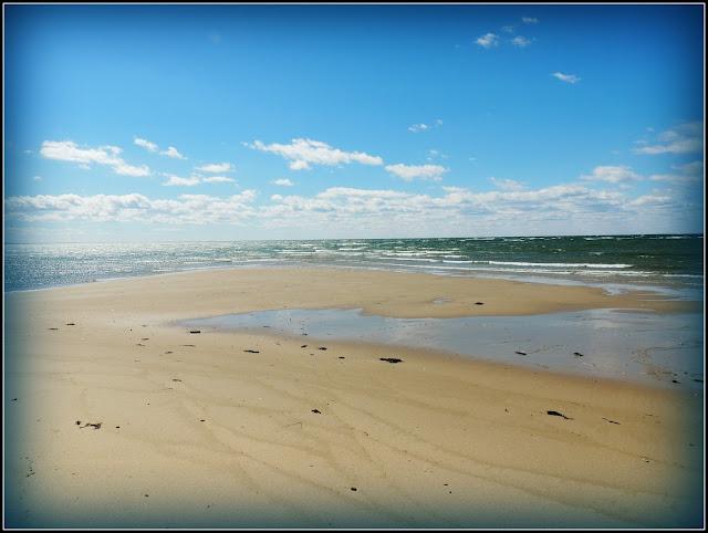 Great Island Trail: Playa