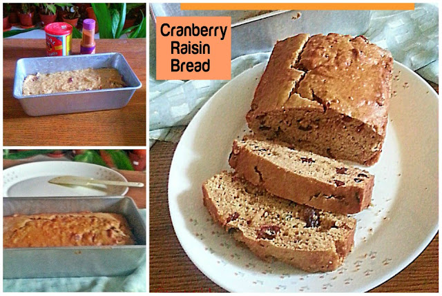 Cranberry Raisin Bread Recipe @ treatntrick.blogspot.com