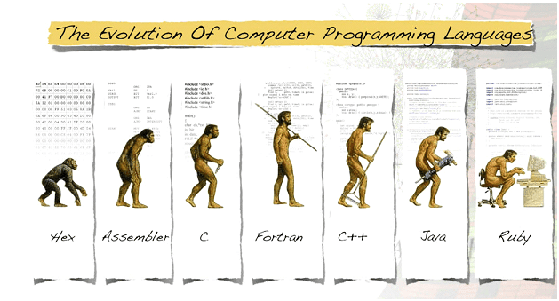 learn of c programming