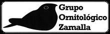 Grupo Zamalla